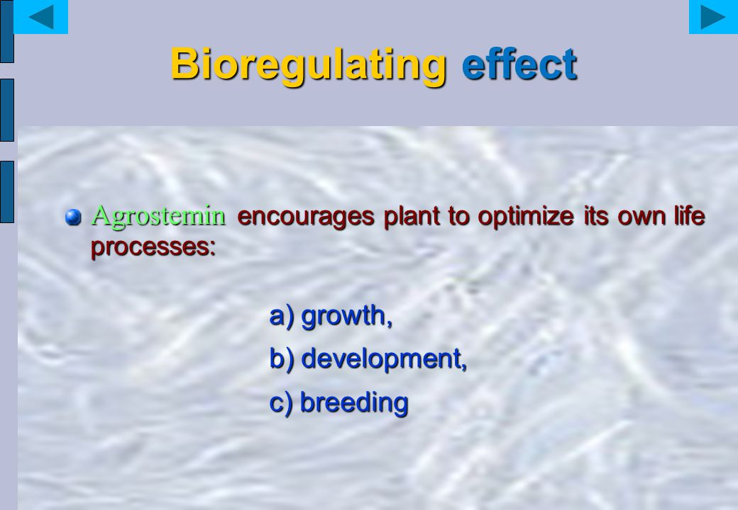 Bioregulating effect Agrostemin encourages plant to optimize its own life processes: a) growth, b) development, c) breeding a) growth, b) development,