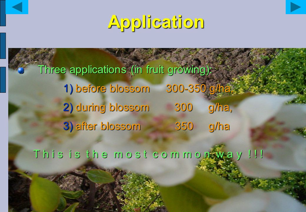 Application Three applications (in fruit growing): 1)before blossom 300-350 g/ha, 2)during blossom 300 g/ha, 3)after blossom 350 g/ha T h i s i s t h e m o s t c o m m o n w a y .