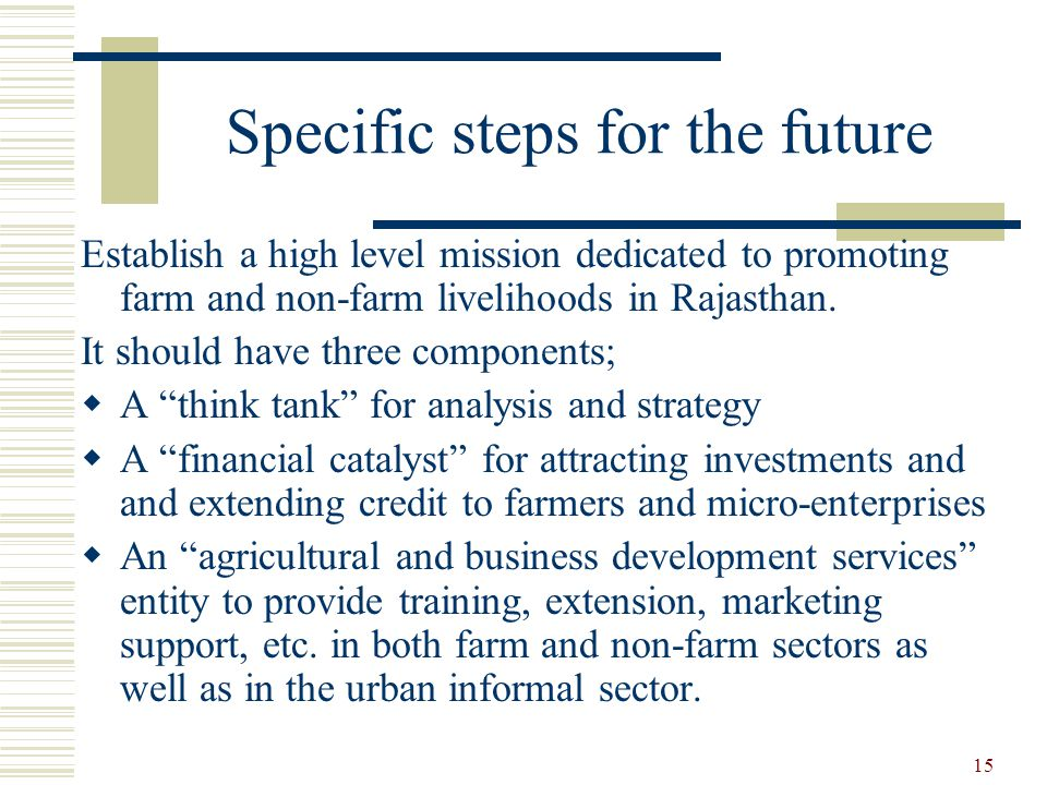 15 Specific steps for the future Establish a high level mission dedicated to promoting farm and non-farm livelihoods in Rajasthan.