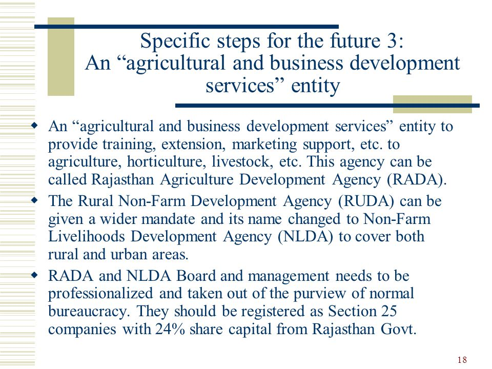 18 Specific steps for the future 3: An agricultural and business development services entity  An agricultural and business development services entity to provide training, extension, marketing support, etc.