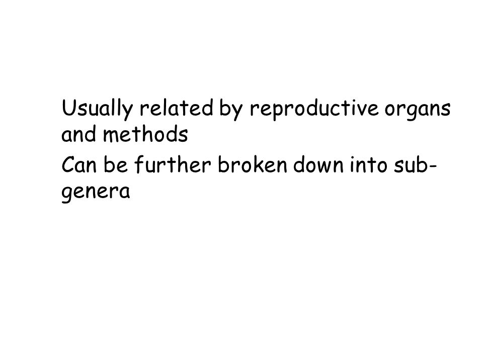 Genus Usually related by reproductive organs and methods Can be further broken down into sub- genera