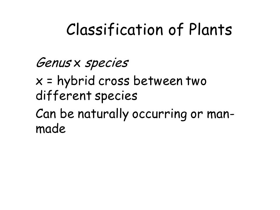 Classification of Plants Genus x species x = hybrid cross between two different species Can be naturally occurring or man- made