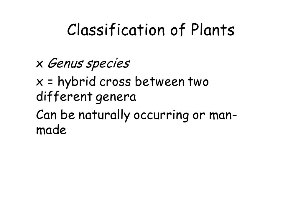 Classification of Plants x Genus species x = hybrid cross between two different genera Can be naturally occurring or man- made
