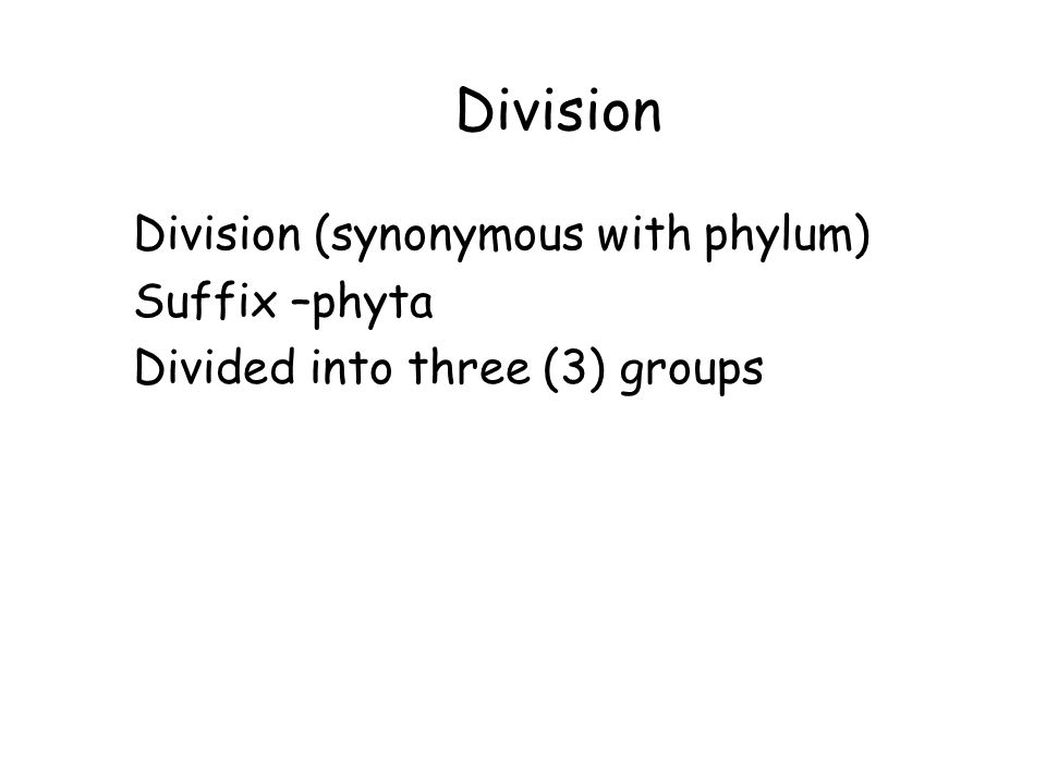 Division Division (synonymous with phylum) Suffix –phyta Divided into three (3) groups