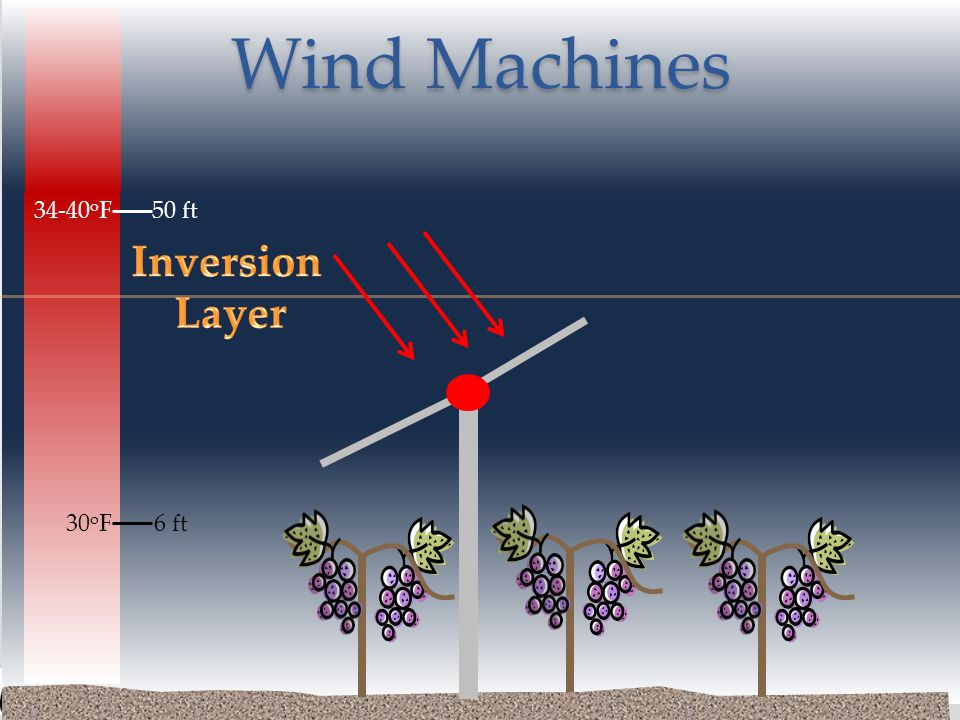 6 ft30 o F 34-40 o F50 ft Wind Machines