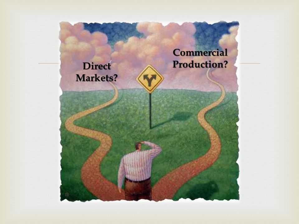  Commercial Production? Direct Markets?