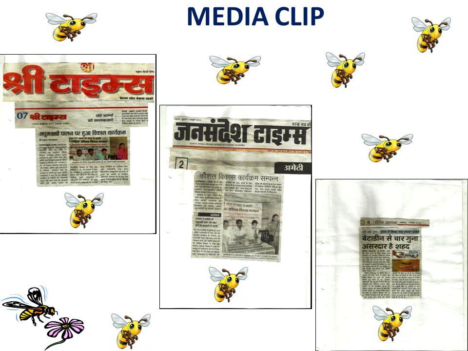 MEDIA CLIP