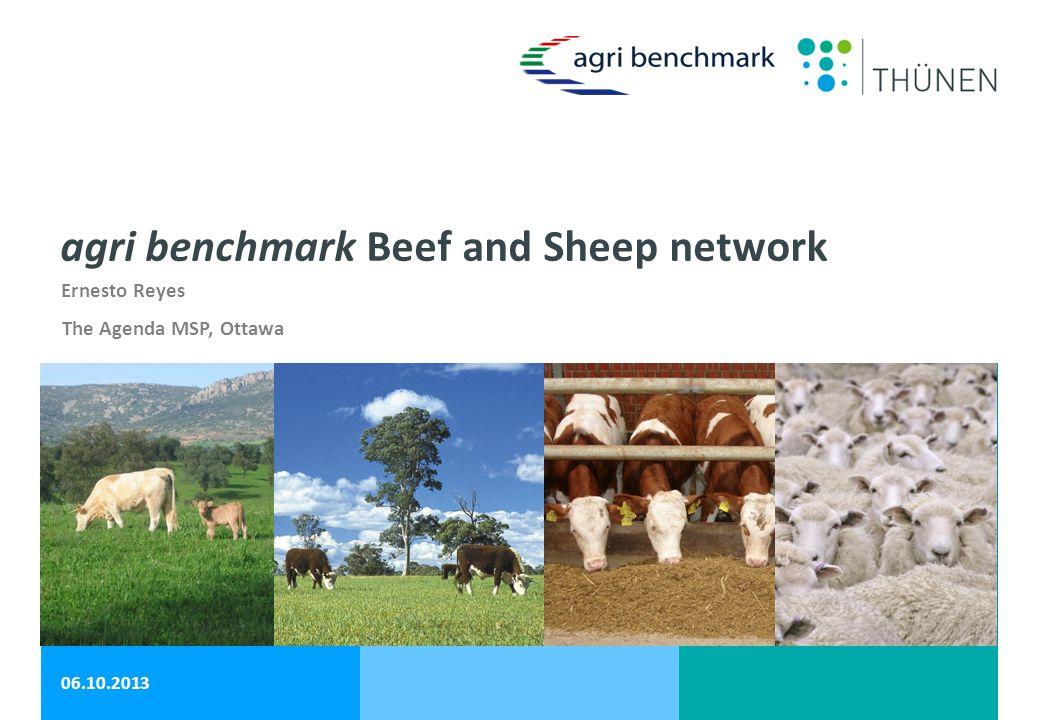 Ernesto Reyes 06.10.2013 agri benchmark Beef and Sheep network The Agenda MSP, Ottawa