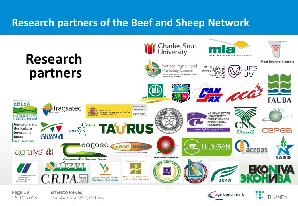 Ernesto Reyes Research partners of the Beef and Sheep Network Page 13 16.10.2013The Agenda MSP, Ottawa Research partners