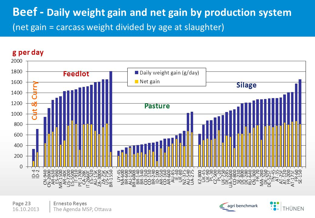 Ernesto Reyes Beef - Daily weight gain and net gain by production system (net gain = carcass weight divided by age at slaughter) Page 23 g per day Pasture Feedlot Silage Cut & Curry 16.10.2013The Agenda MSP, Ottawa