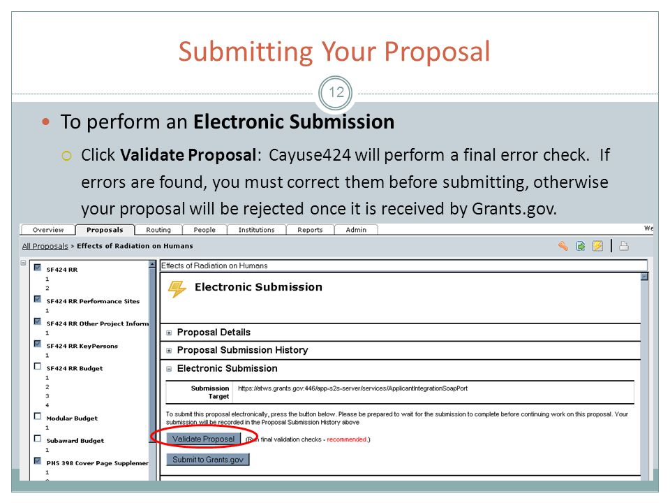 Submitting Your Proposal 12 To perform an Electronic Submission  Click Validate Proposal: Cayuse424 will perform a final error check.