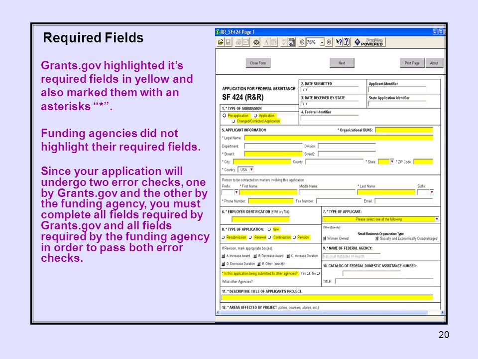 20 Grants.gov highlighted it's required fields in yellow and also marked them with an asterisks * .
