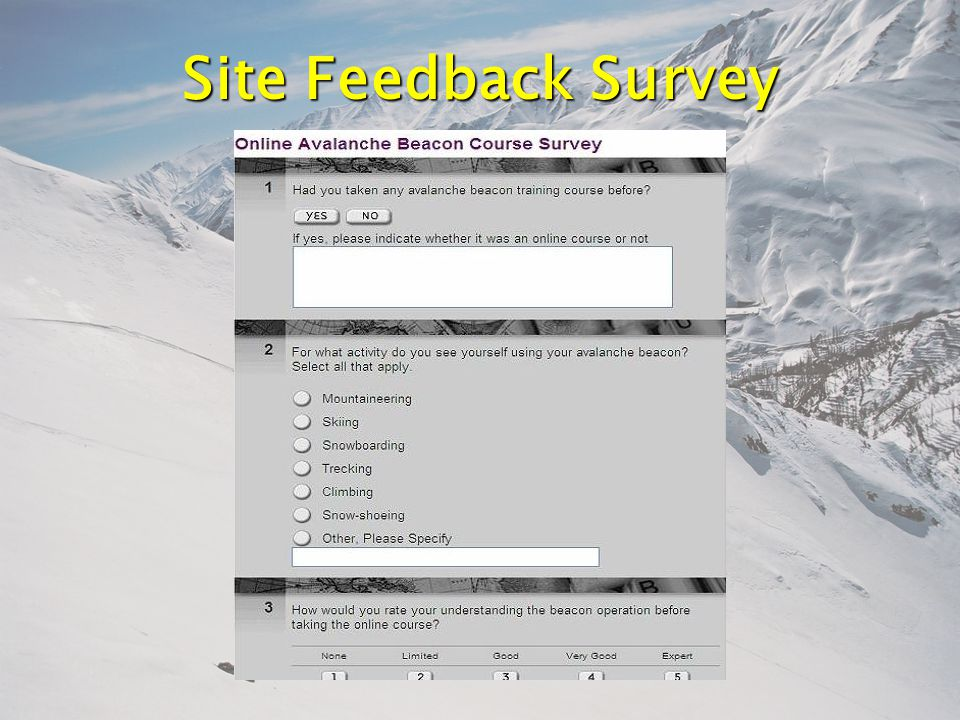 Site Feedback Survey