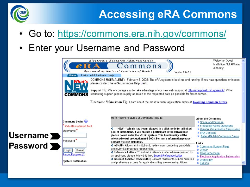 Accessing eRA Commons Go to: https://commons.era.nih.gov/commons/https://commons.era.nih.gov/commons/ Enter your Username and Password Username Password