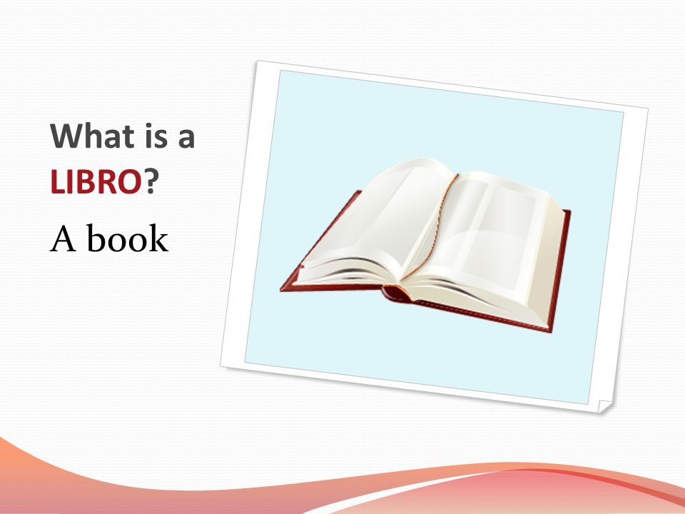 What is a LIBRO A book