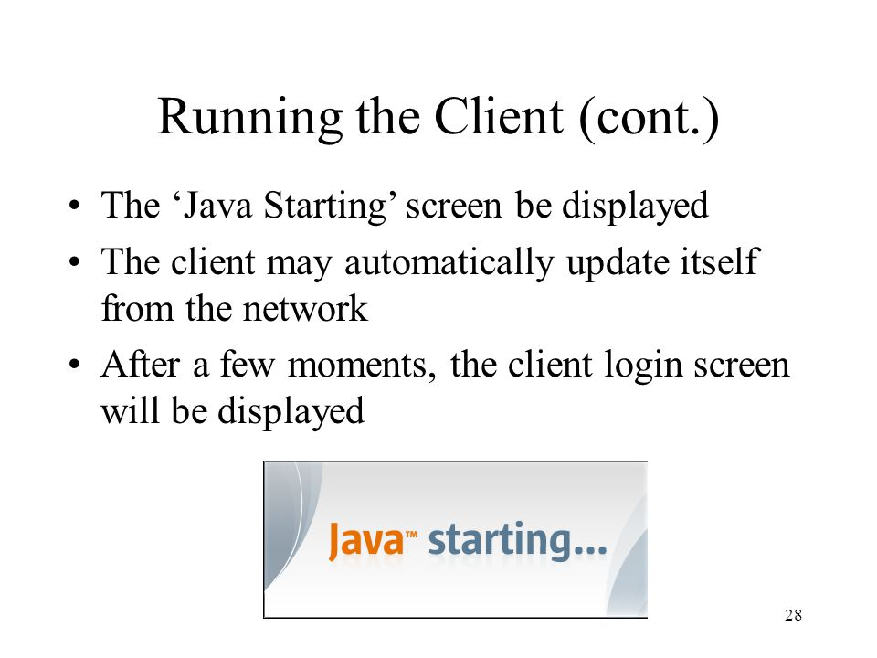 Running the Client (cont.) The 'Java Starting' screen be displayed The client may automatically update itself from the network After a few moments, the client login screen will be displayed 28