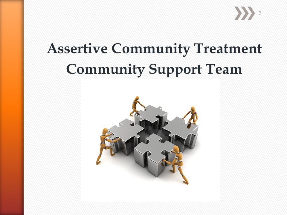 Assertive Community Treatment Community Support Team 2
