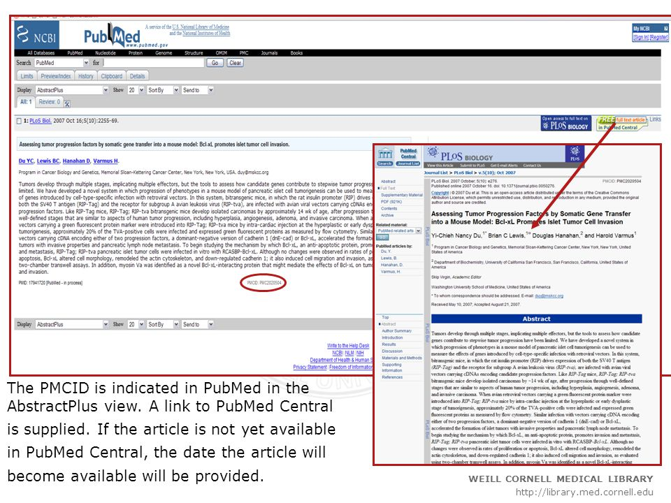 ____________________________________________________________________ _____________________________________________ WEILL CORNELL MEDICAL LIBRARY http://library.med.cornell.edu The PMCID is indicated in PubMed in the AbstractPlus view.