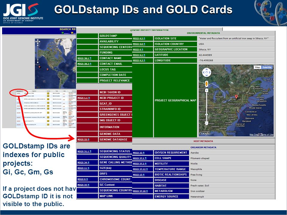GOLDstamp IDs and GOLD Cards GOLDstamp IDs are indexes for public projects: Gi, Gc, Gm, Gs If a project does not have a GOLDstamp ID it is not visible to the public.