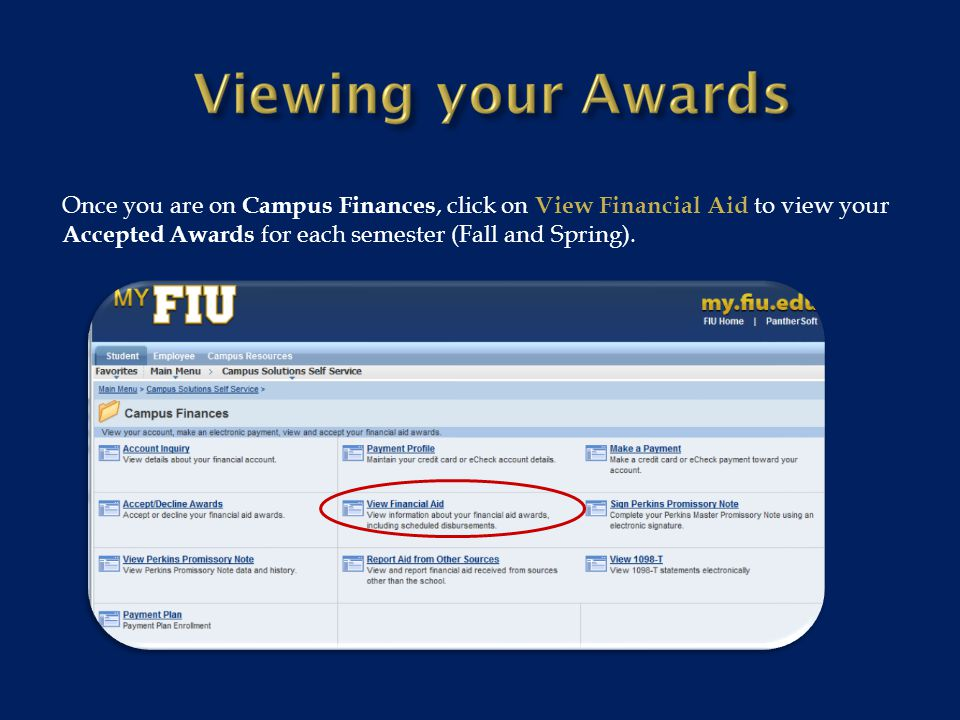 Once you are on Campus Finances, click on View Financial Aid to view your Accepted Awards for each semester (Fall and Spring).