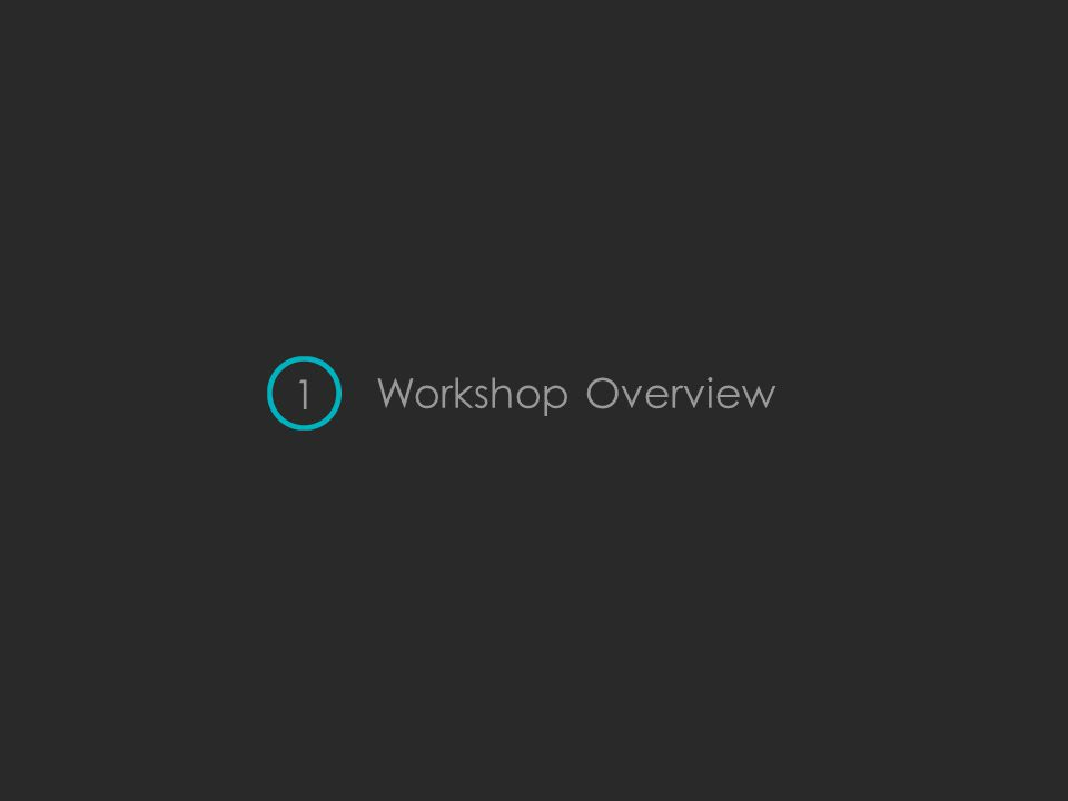 Workshop Overview 1