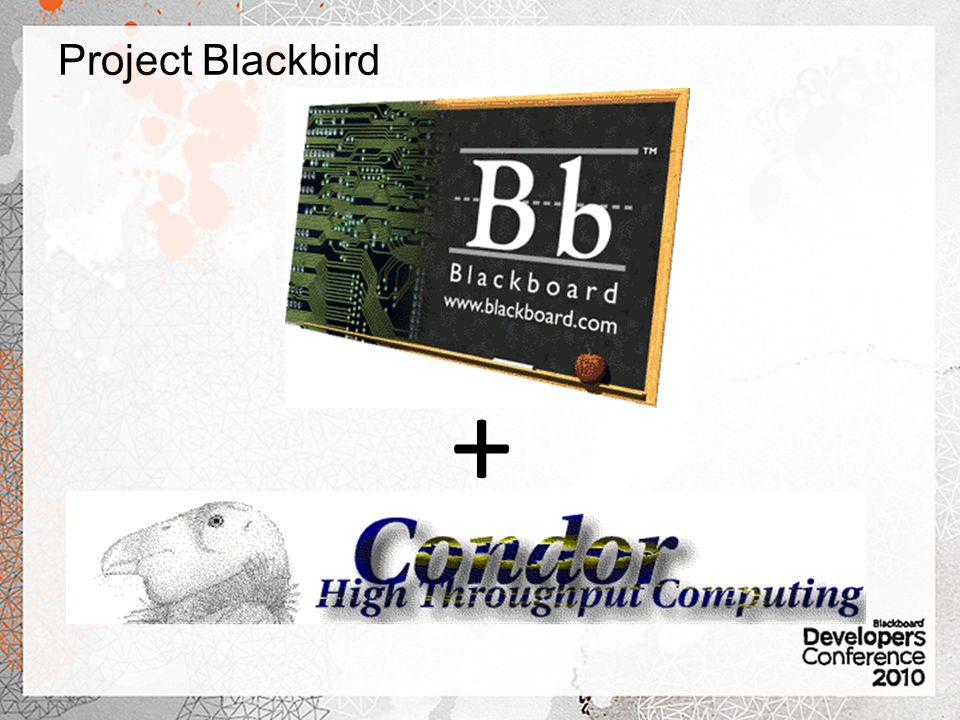 Project Blackbird +