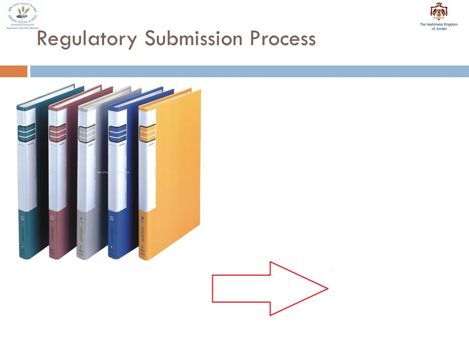 Regulatory Submission Process