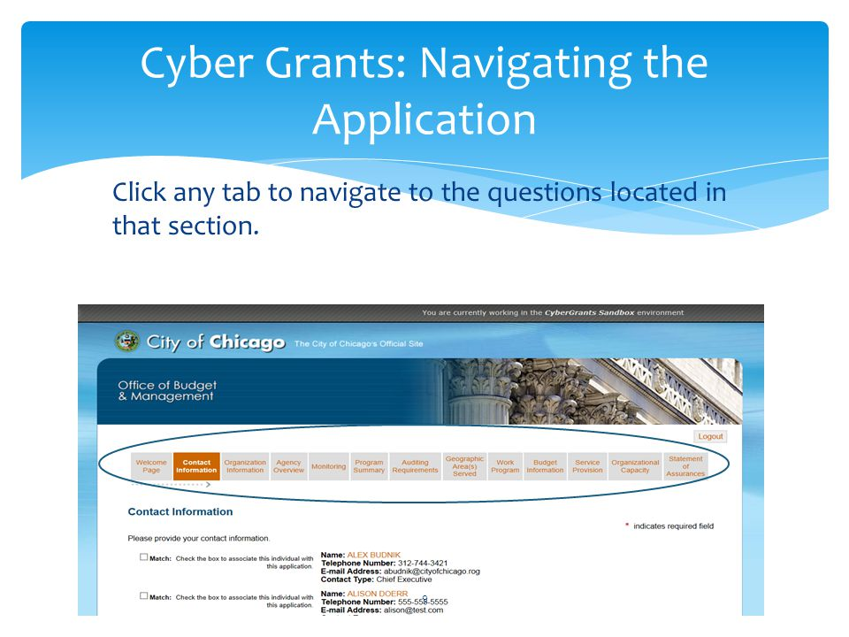 Click any tab to navigate to the questions located in that section. Cyber Grants: Navigating the Application 9