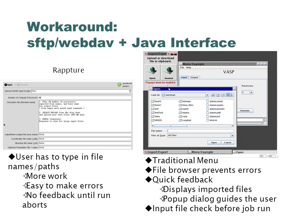Workaround: sftp/webdav + Java Interface  User has to type in file names/paths  More work  Easy to make errors  No feedback until run aborts Rappture  Traditional Menu  File browser prevents errors  Quick feedback  Displays imported files  Popup dialog guides the user  Input file check before job run