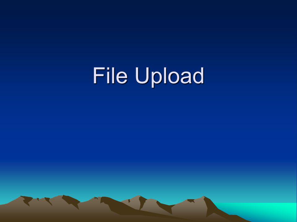 File Upload