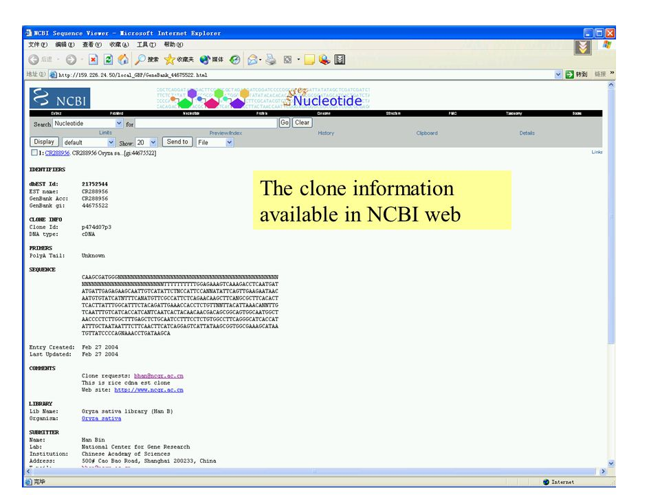 The clone information available in NCBI web