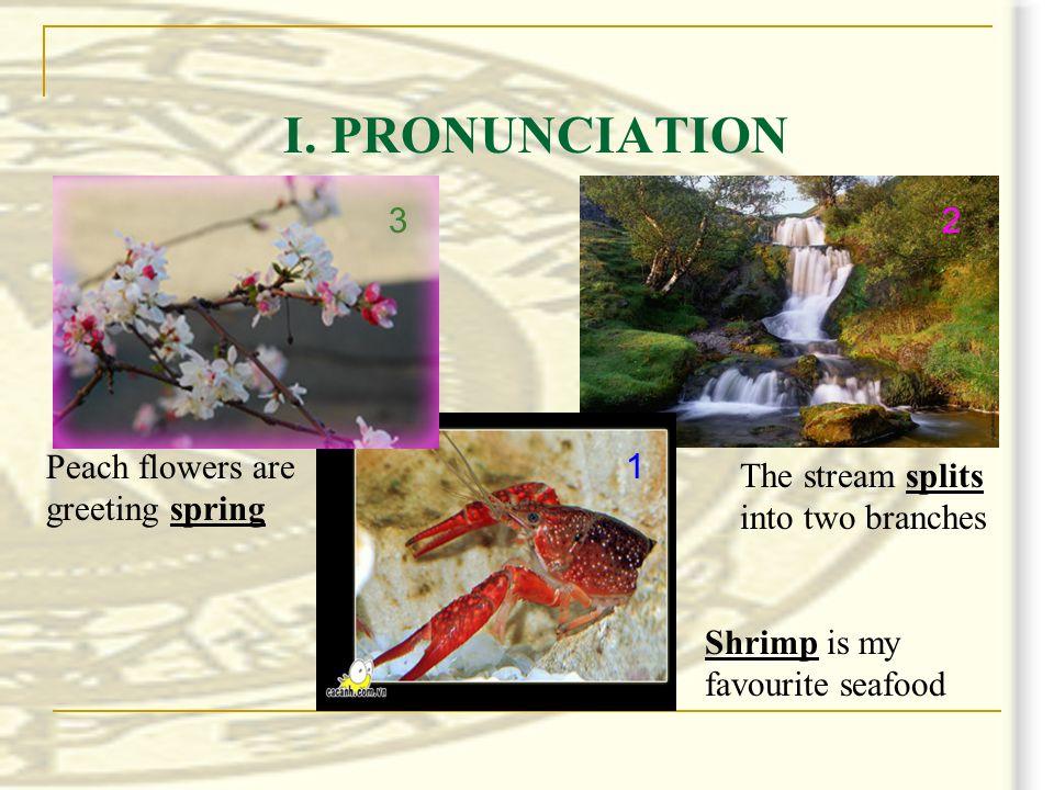 pronunciation   pronunciation  shred shrill shrimp shrine splash split spleen splutter spring spray spread sprightly /∫r//∫r/ /spl//spr/ LISTEN AND REPEAT
