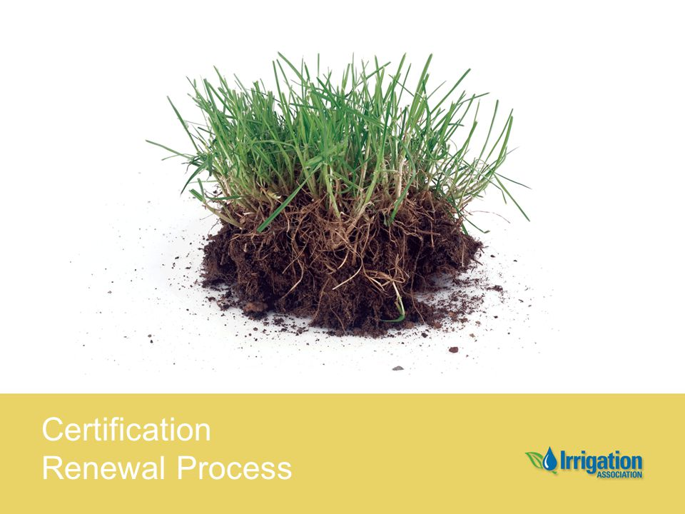 Certification Renewal Process