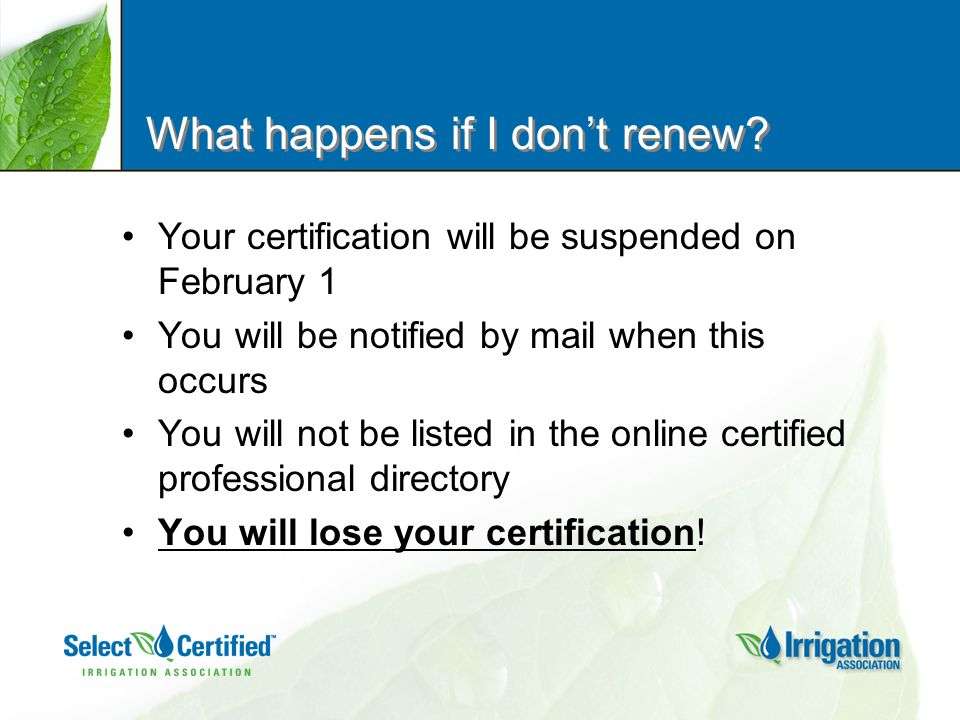 What happens if I don't renew.