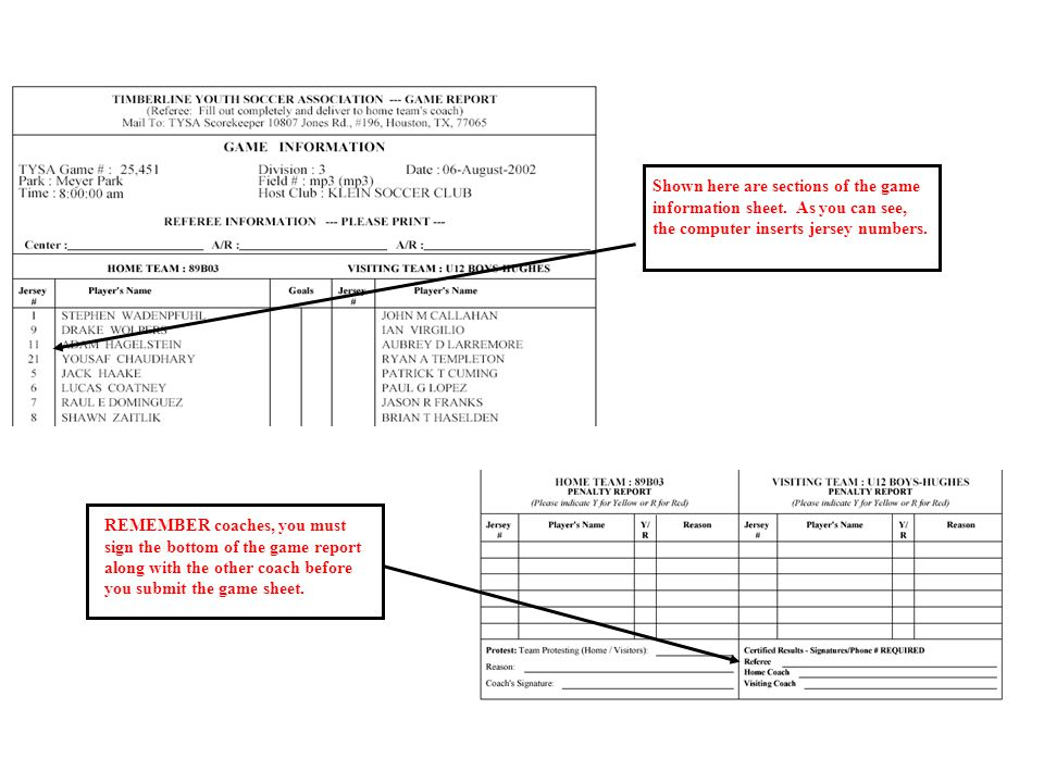 Shown here are sections of the game information sheet.