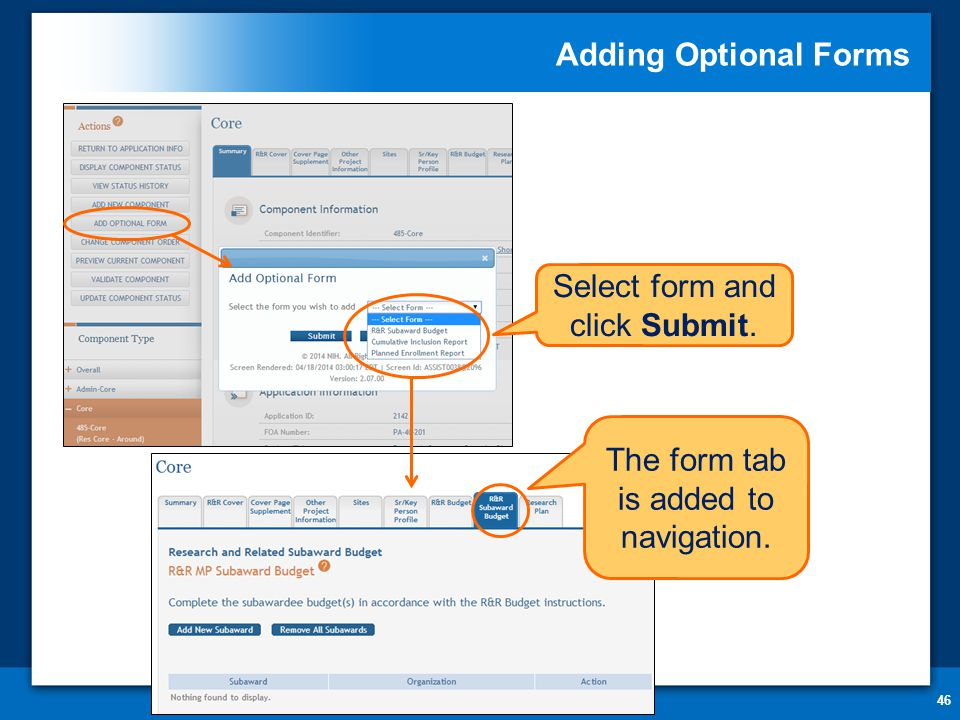The form tab is added to navigation. Adding Optional Forms 46 Select form and click Submit.