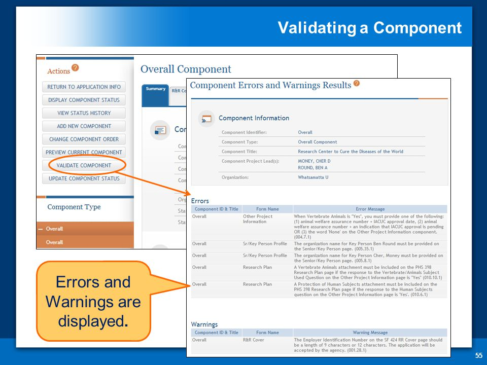 Validating a Component 55 Errors and Warnings are displayed.