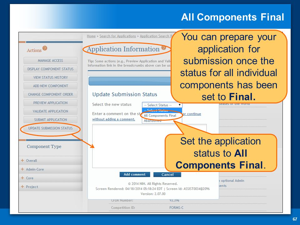 All Components Final 67 You can prepare your application for submission once the status for all individual components has been set to Final.
