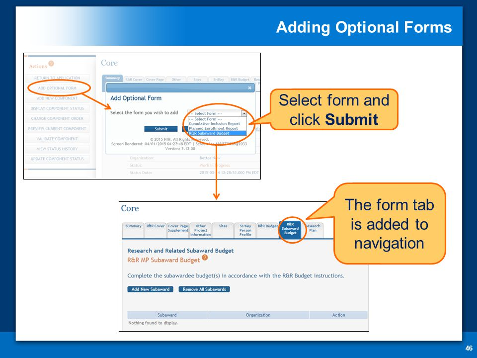 The form tab is added to navigation Adding Optional Forms 46 Select form and click Submit