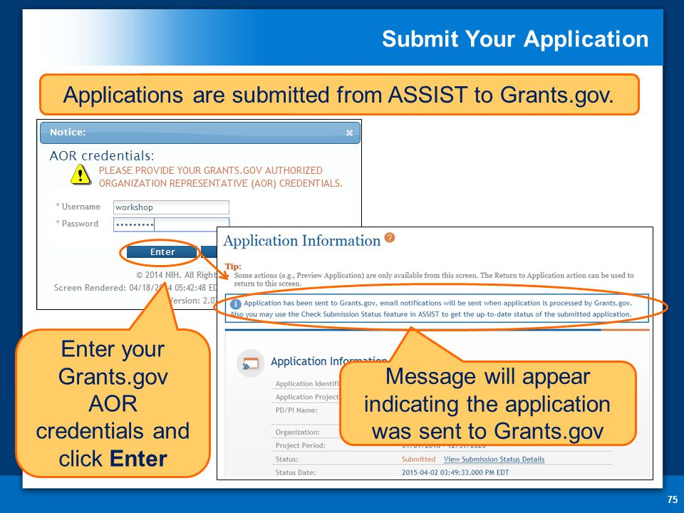 Submit Your Application 75 Message will appear indicating the application was sent to Grants.gov Applications are submitted from ASSIST to Grants.gov.