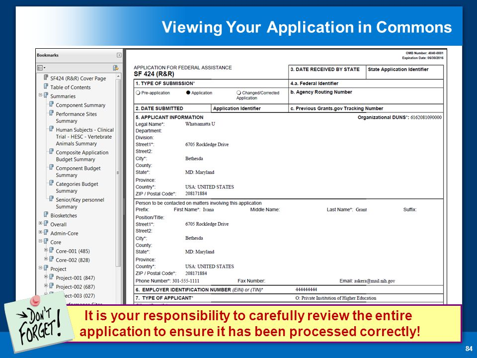 Viewing Your Application in Commons 84 It is your responsibility to carefully review the entire application to ensure it has been processed correctly!