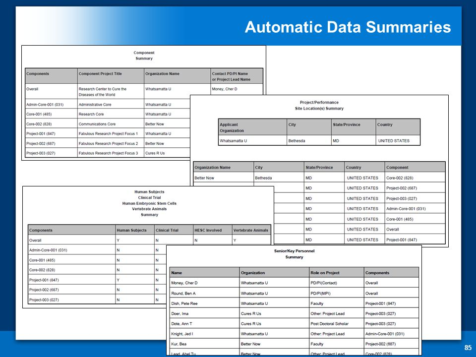 Automatic Data Summaries 85