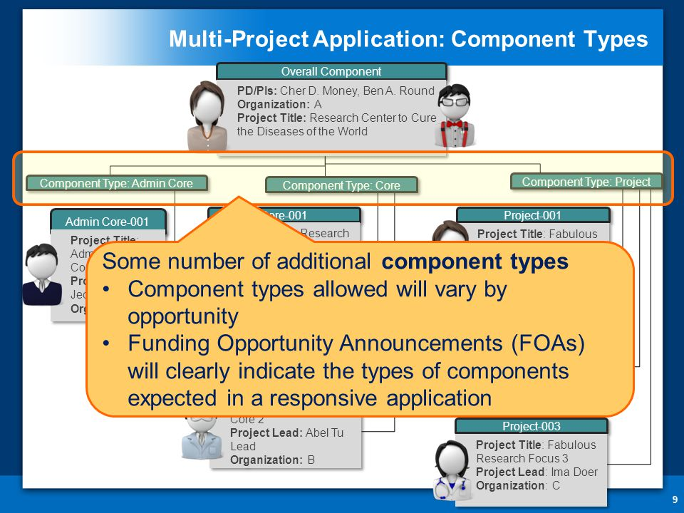 Multi-Project Application: Component Types 9 Core-001 Project Title: Research Core Project Lead: Ben A.