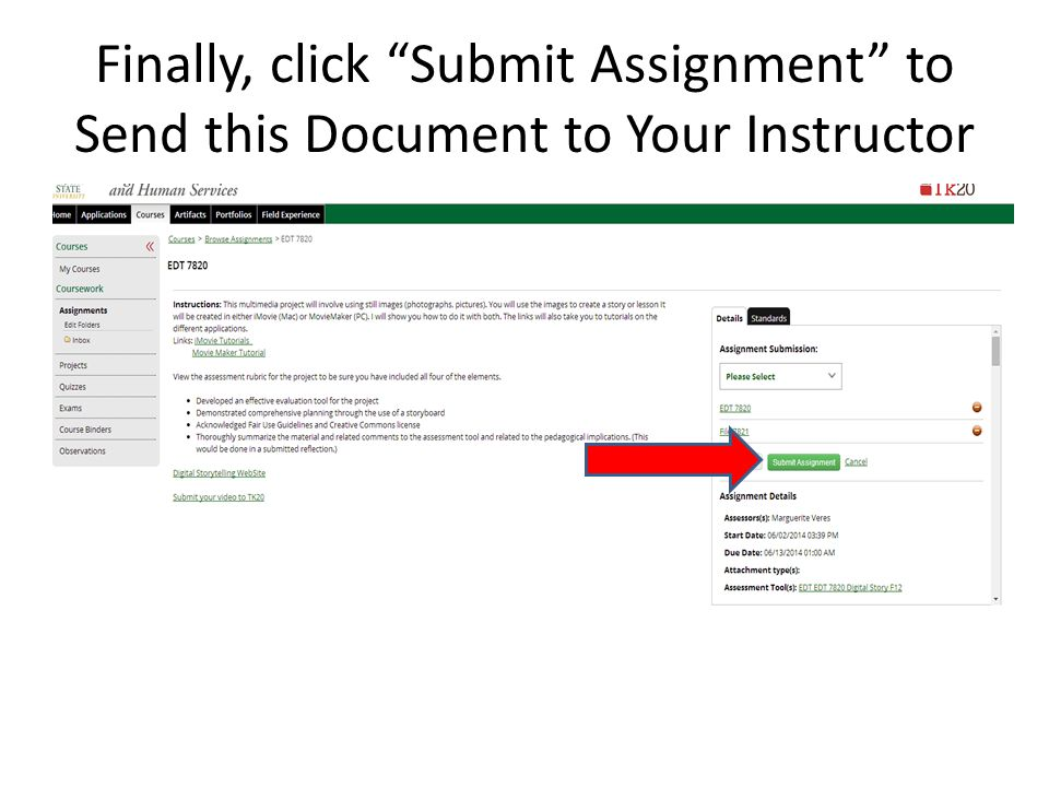 """Finally, click """"Submit Assignment"""" to Send this Document to Your Instructor"""