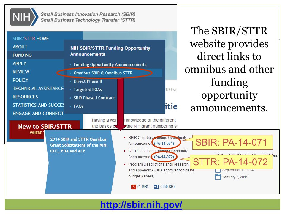 16 SBIR: PA-14-071 STTR: PA-14-072 http://sbir.nih.gov/ The SBIR/STTR website provides direct links to omnibus and other funding opportunity announcements.