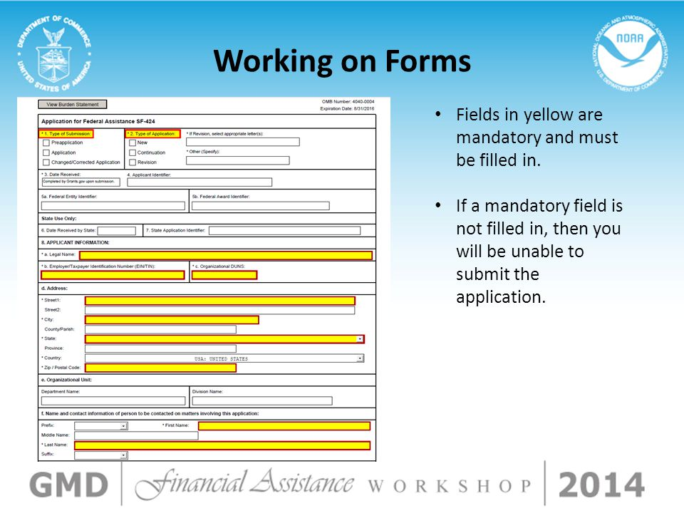 Fields in yellow are mandatory and must be filled in. If a mandatory field is not filled in, then you will be unable to submit the application. Workin