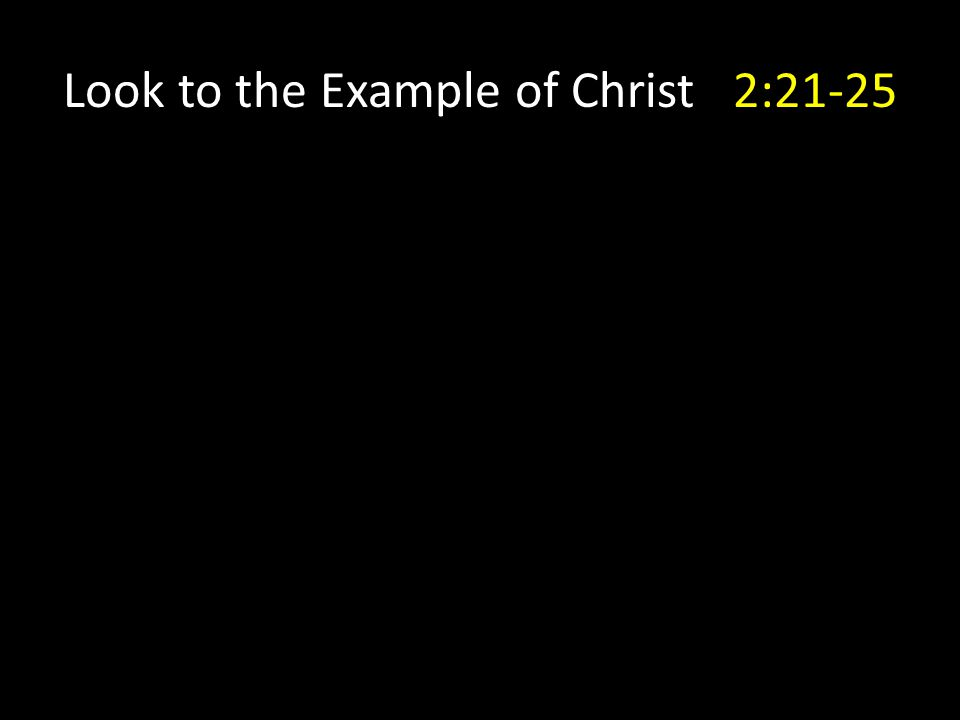 Look to the Example of Christ 2:21-25