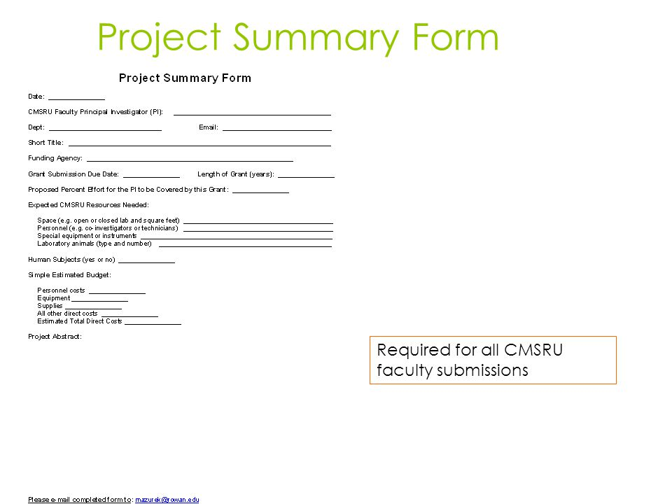 Project Summary Form Required for all CMSRU faculty submissions