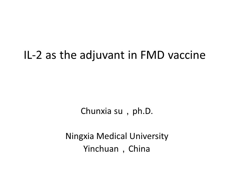 IL-2 as the adjuvant in FMD vaccine Chunxia su , ph.D. Ningxia Medical University Yinchuan , China