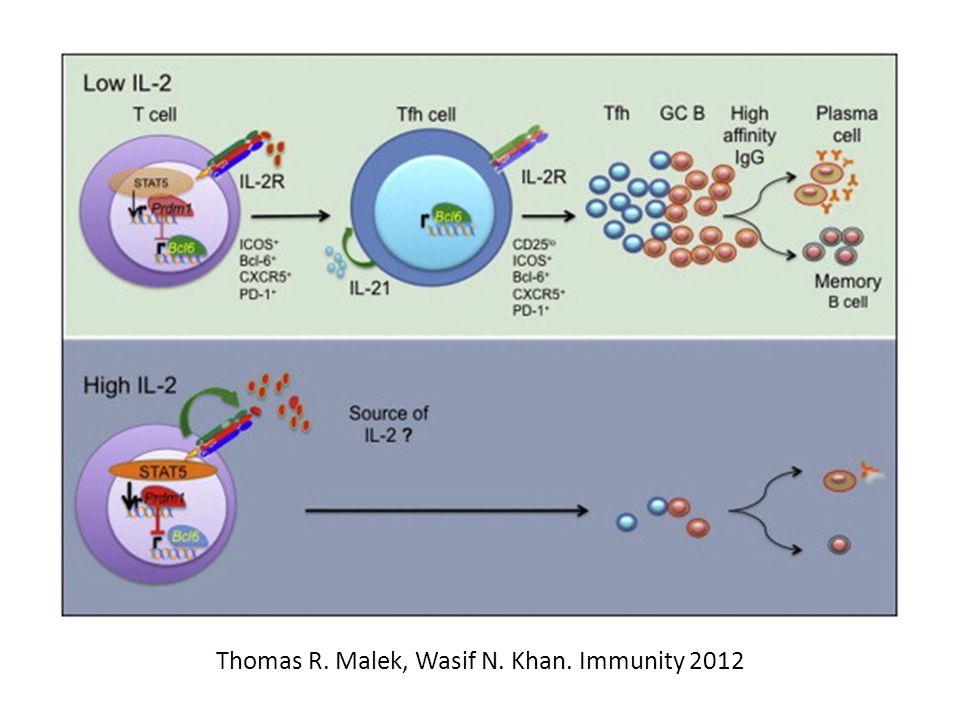 Thomas R. Malek, Wasif N. Khan. Immunity 2012